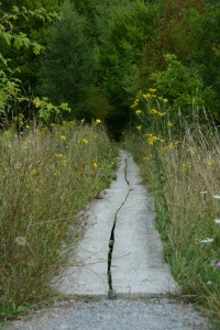 Where does the path lead us?