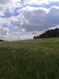 Jena Saale Horizontale.jpg