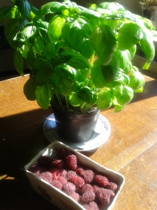 raspberries and basil.jpg