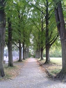 Friedensberg_Jena.jpg